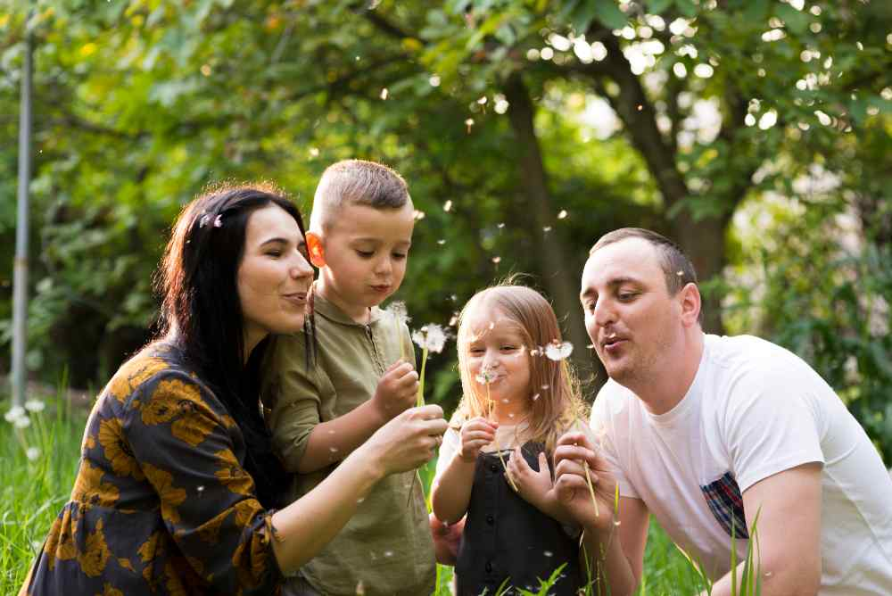Principios de Bioética y Familia en linea